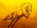 Horse-racing club
