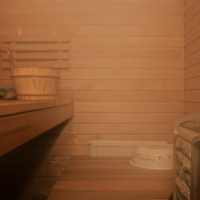 Finnish saunas